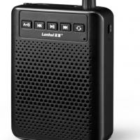 蓝慧 G528大功率教师专用教学便携式小蜜蜂扩音器
